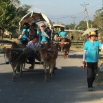 Ox Cart Riding