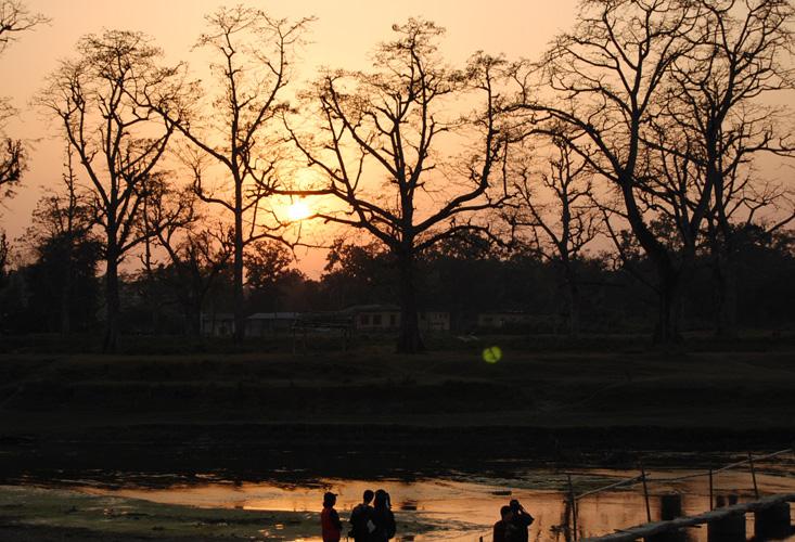 breed-sunset