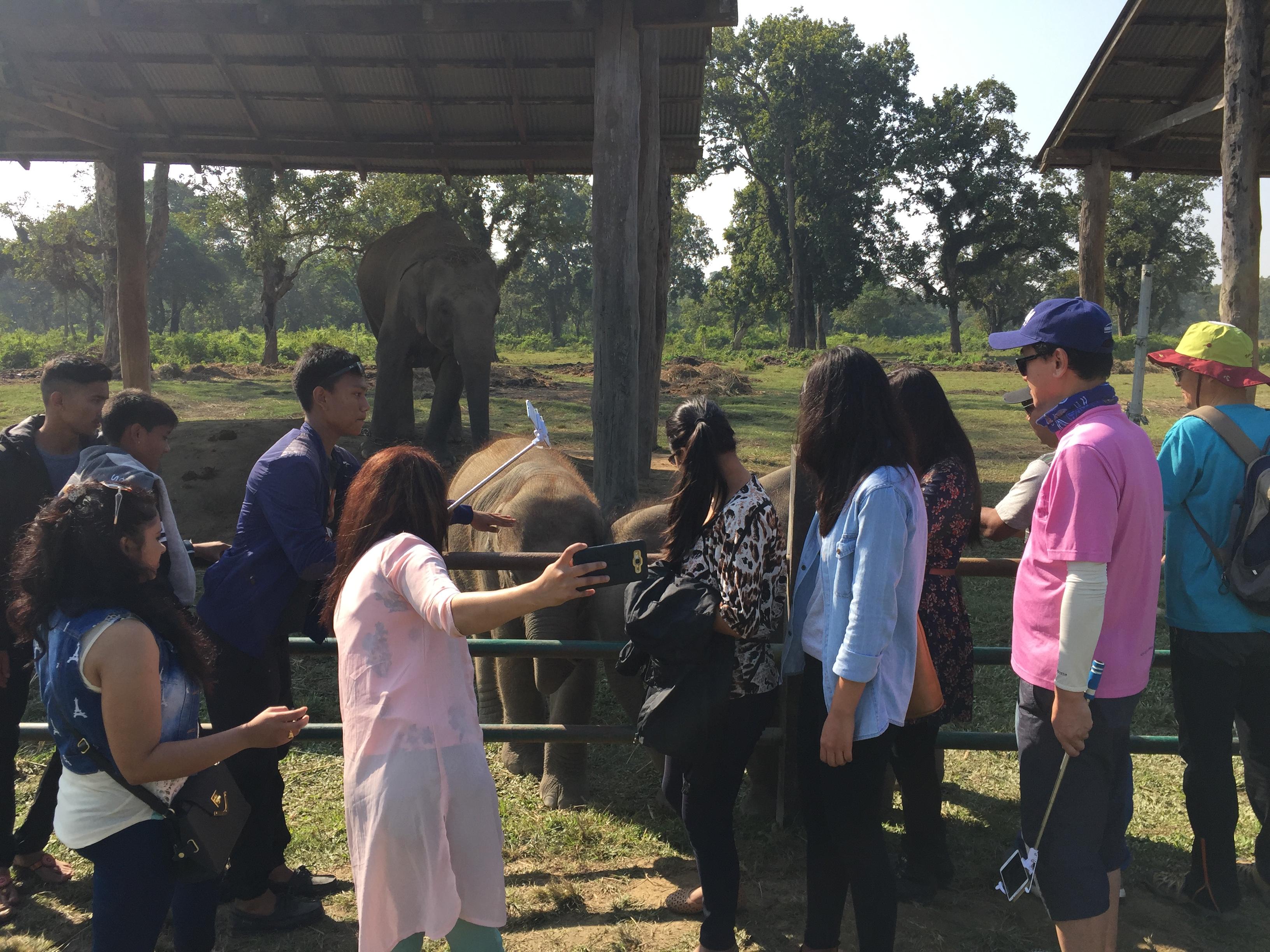 Visiting Elephant Breeding center